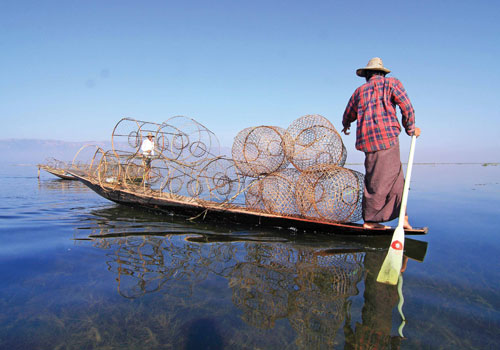 An Intha fisherman balances on a long-tail boat at Inle Lake. (Boothee/The Myanmar Times)