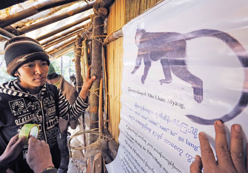 A poster urging residents to protect the snub-nosed monkey is put up in an ethnic Lisu area of Kachin State. Photo: Supplied