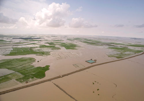 The Myanmar Rice Federation says over 500,000 acres of paddy fields are underwater, leading to a temporary halt on rice exports. Photo: Kaung Htet / The Myanmar Times