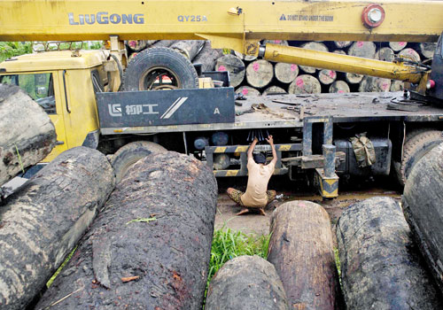 A worker inspects a truck at a holding area for logs beside the Yangon River on July 23, 2015. Photo: AFP