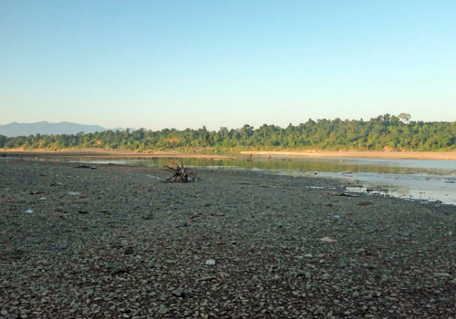 The Chindwin riverbed is overloaded by silt from illegal gold mining. Staff