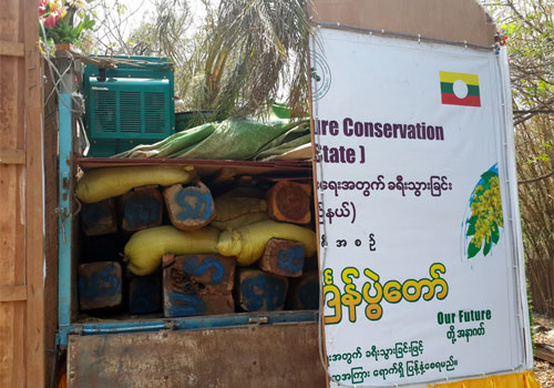 Illegal timber smuggled under the guise of a Thingyan float bearing environmental messages in April 2014