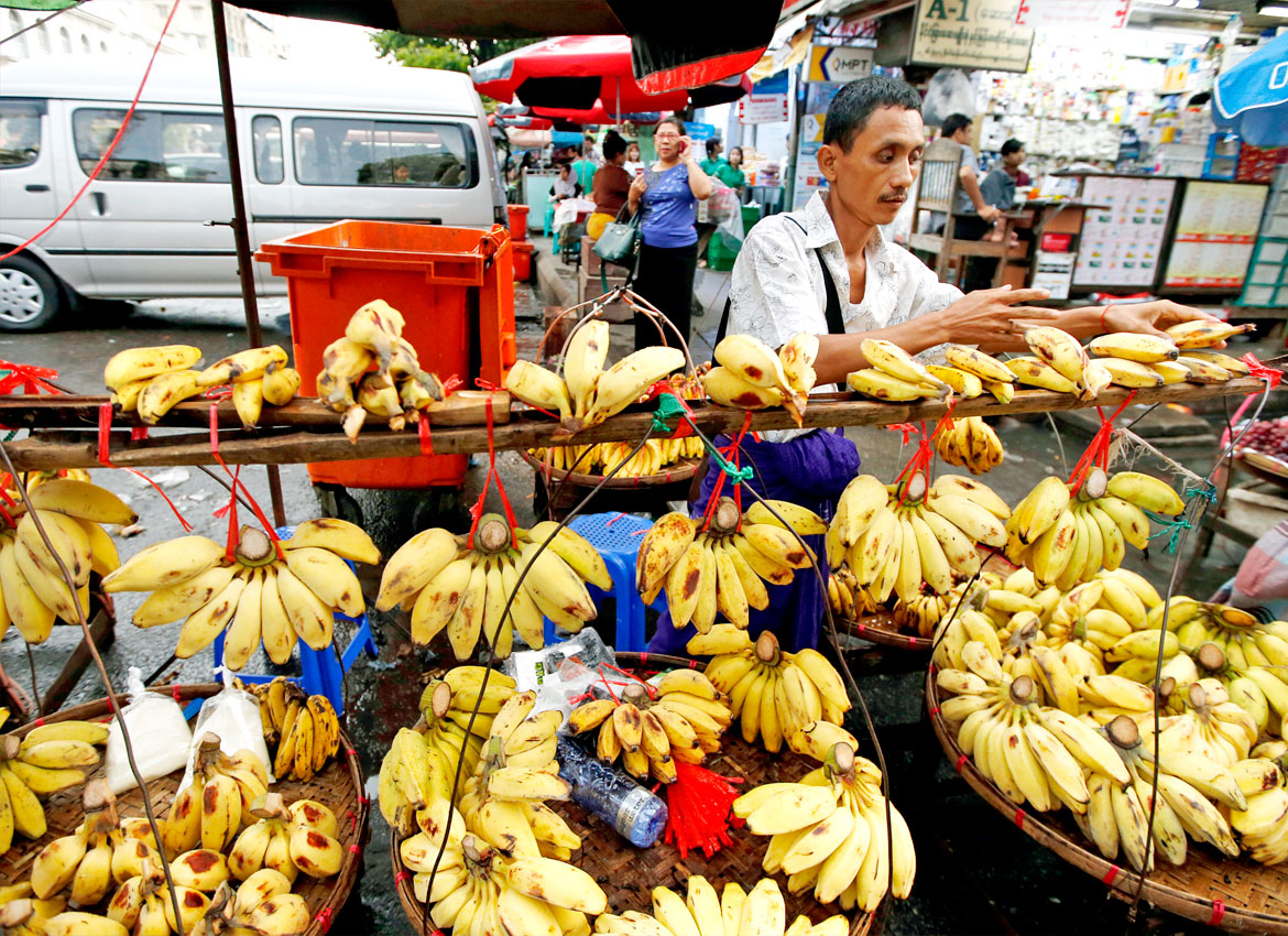 A file photo of a man selling bananas in a Yangon market. Small businesses such as this make up a large portion of the informal economy in the country. Photo: EPA