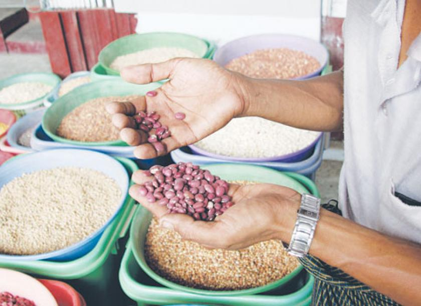 Beans traders mull adding value   The Myanmar Times