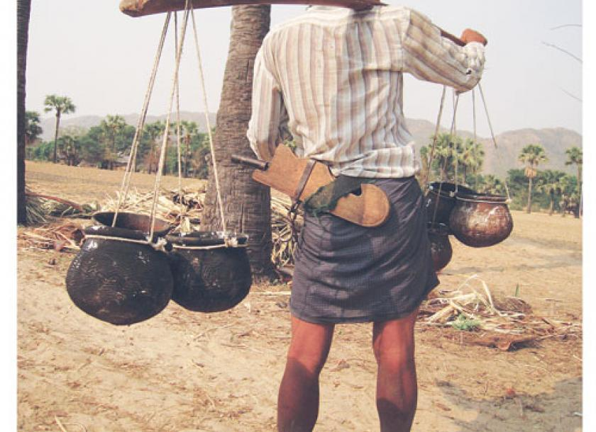 Toddy documentary an 'up-tree' struggle | The Myanmar Times