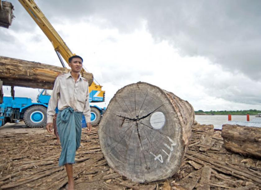 One-year logging ban proposed | The Myanmar Times