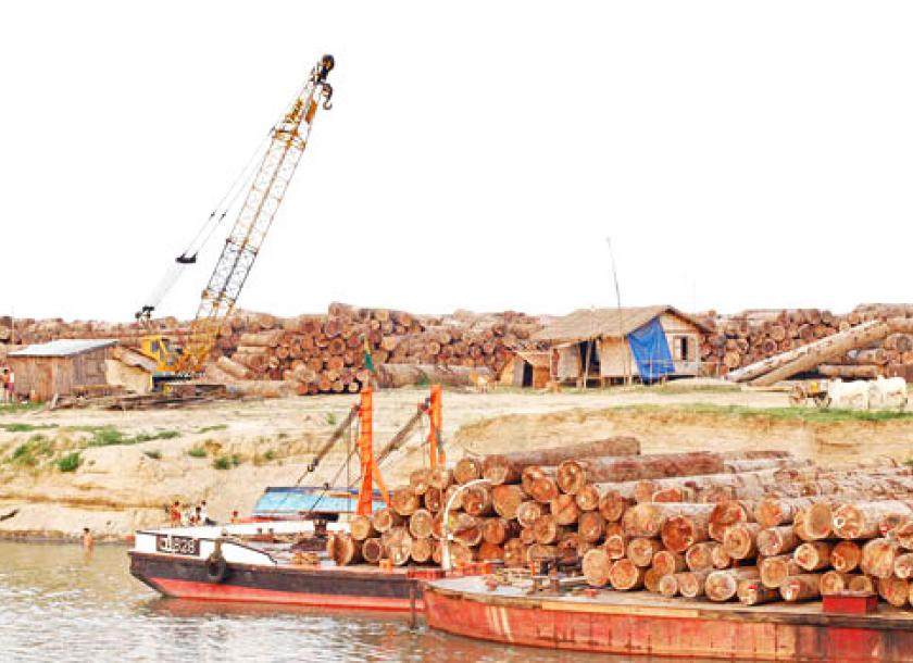 Myanma Timber Enterprise to respond to Danish teak sanctions