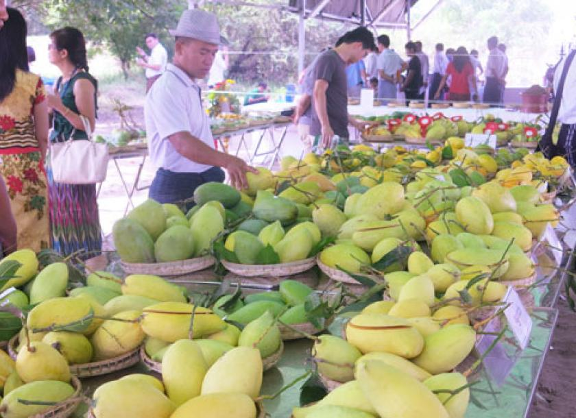China buys up Myanmar's entire mango export | The Myanmar Times
