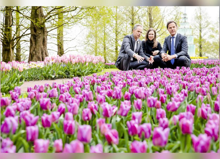 Dutch Prime Minister Mark Rutte (right) sits among tulip beds at a flower exhibition in Lisse, the Netherlands, in April. Photo: EPA