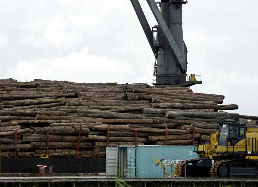 MIC suspends new investments in timber businesses | The