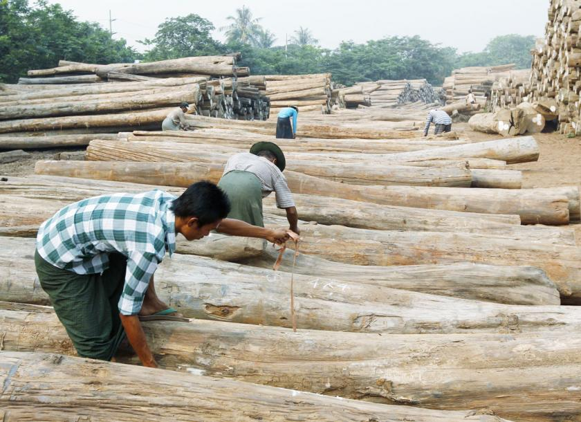Myanmar Timber Enterprise targets higher sales, commercial